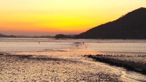 La baie de Suncheon, incontournable pour un voyage en Corée du Sud